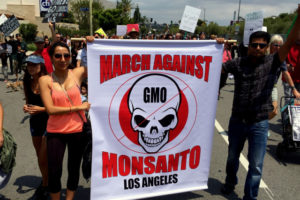 Anti-GMO Activists Shut Down Hollywood Blvd. – March Against Monsanto 2015
